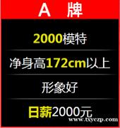 上海夜场招聘-2021年求职者必须要找的工作
